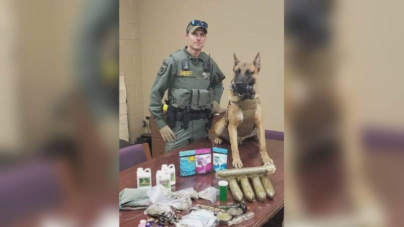 Montague County's furry four-legged law enforcement officer, Ace, is getting a little extra...