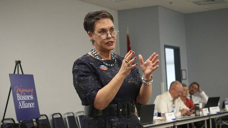 FILE - In this May 16, 2018 file photo, Harriet Hageman addresses a meeting of the Wyoming...