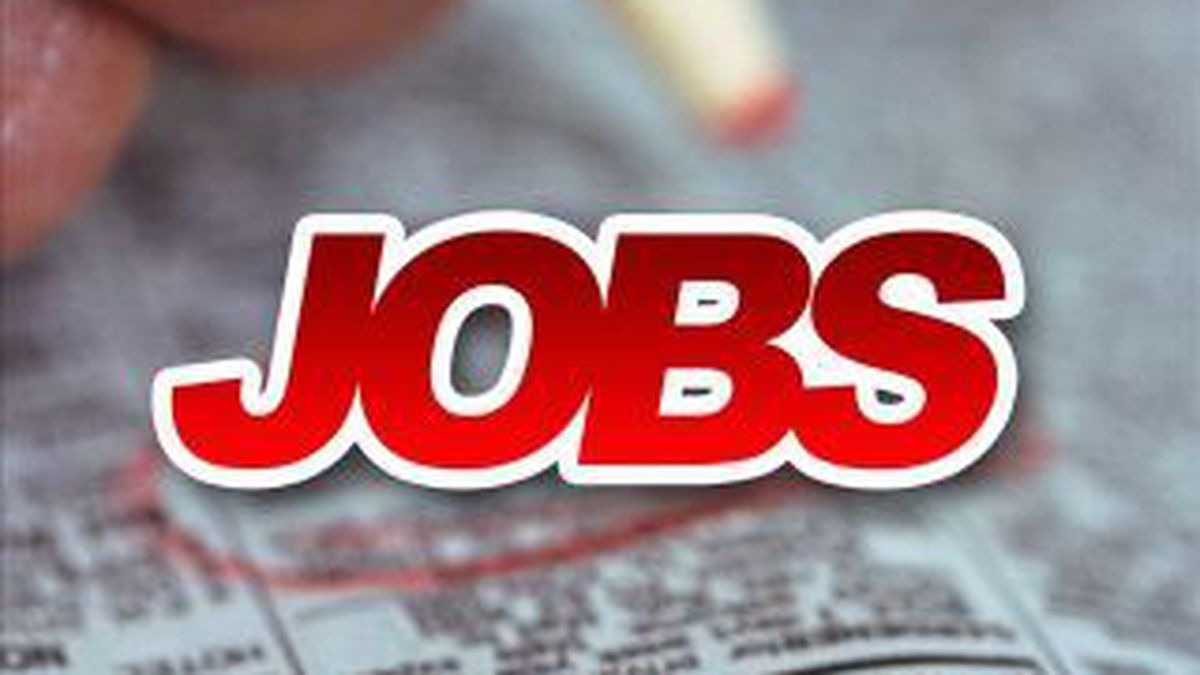 Returning veterans attended a job fair in Cape Girardeau hoping to find work.