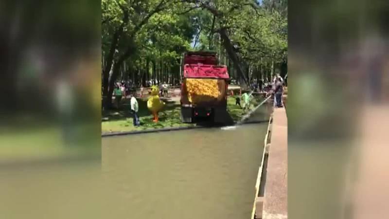 Duck Derby | Graham Rotary Club | Graham, Texas
