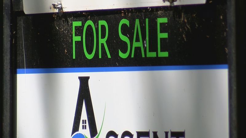 Despite COVID-19 real estate agencies are  still seeing houses bought and up for sale.