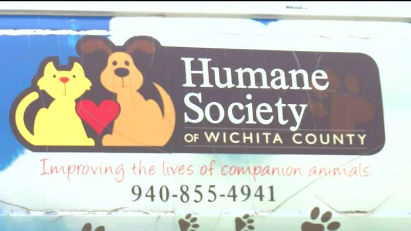 Patterson Honda accepting pet supplies for Humane Society