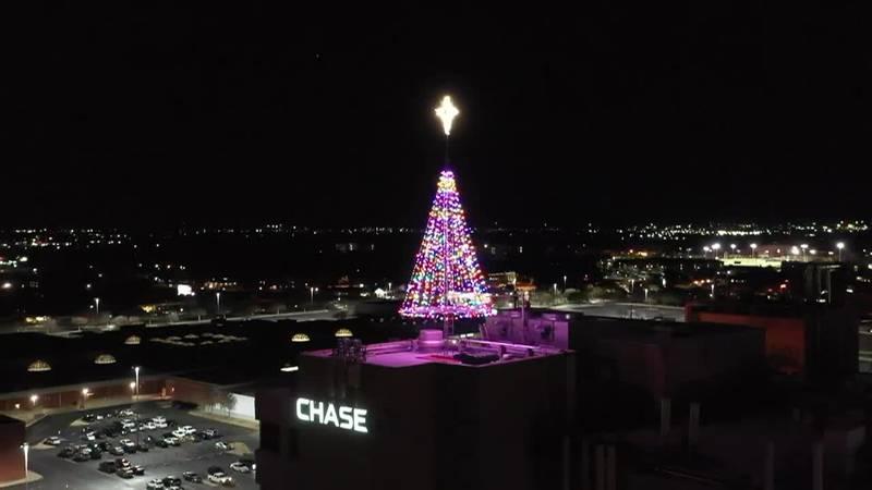 Hospice Tree of Lights - Wichita Falls, TX