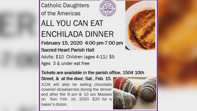 The Catholic Daughters of the Americas, Court No. 309, will be serving their annual Enchilada...