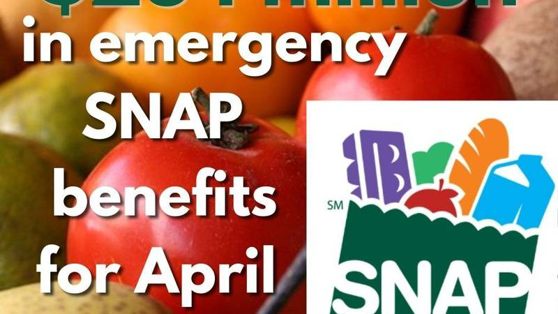 Families and individuals who depend on the Texas Supplemental Nutrition Assistance Program...